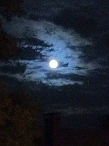 Blue Moon:  the song was right!